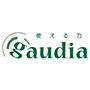 ガウディア国語算数教室